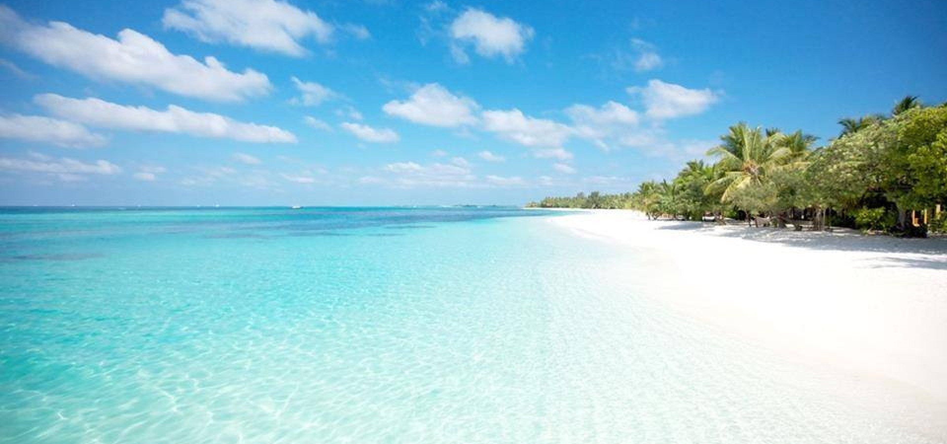 Image result for maritim crystal beach mauritius