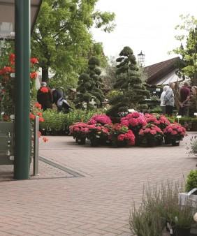 RegTaylor Garden 3 C