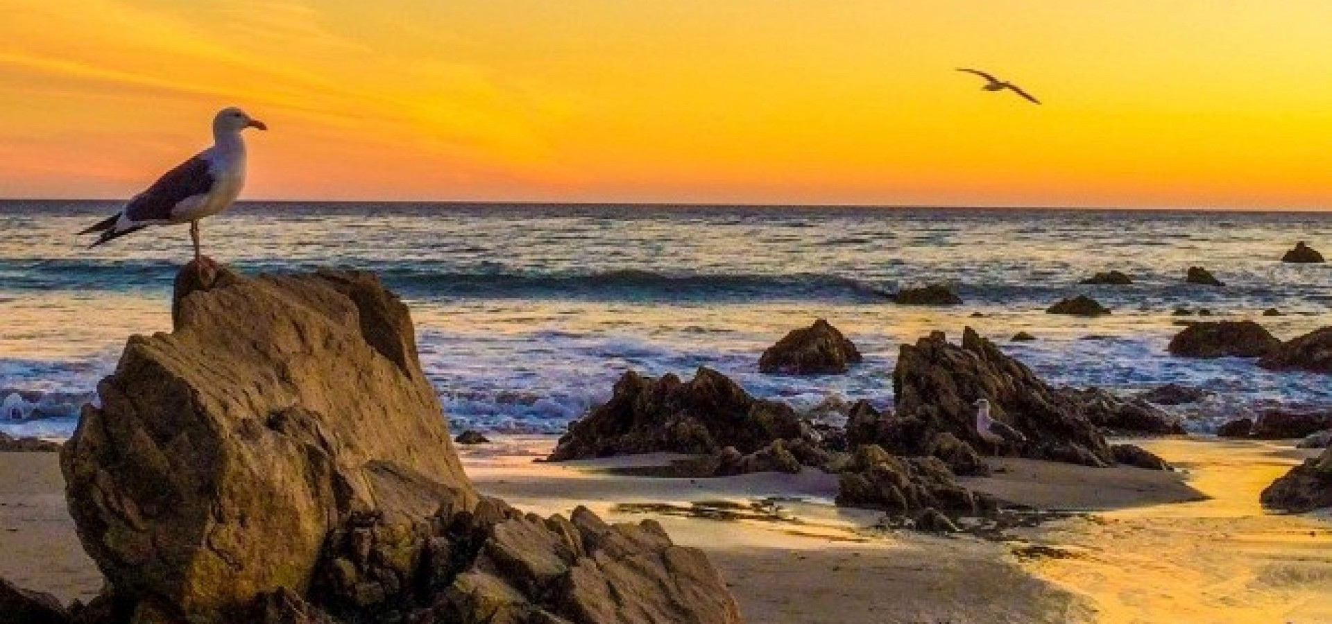 Best Photography Spots In Malibu California Top Tourist