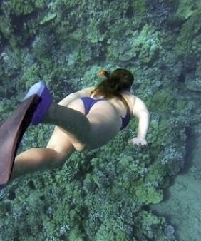 snorkeling-984422_640 (1)