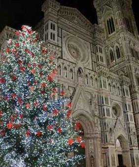 christmas_Tree-web-600