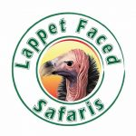 Lappet Faced Safaris